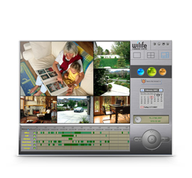 Platinum for Logitech Digital Video Security